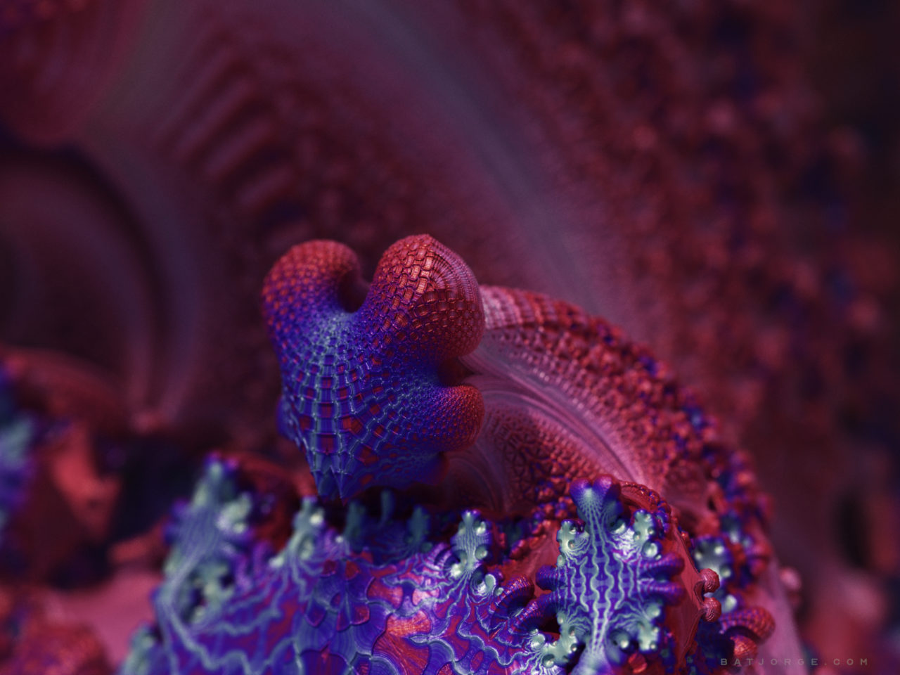 3d abstract fractal dragon. rotbox