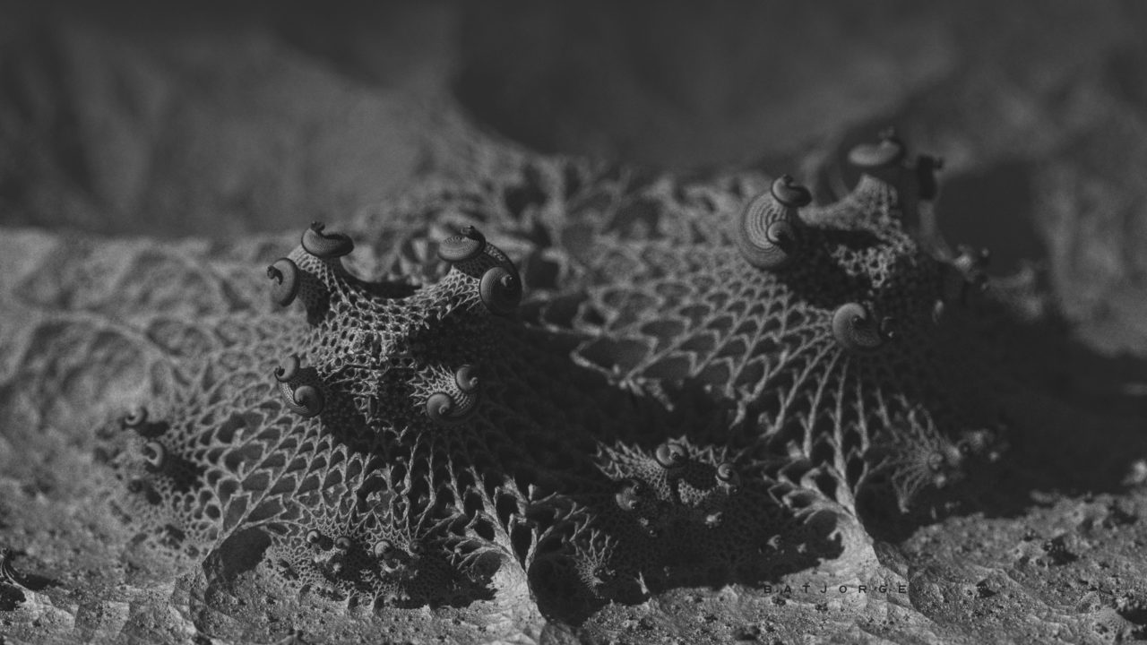 3d fractal.organic look. depth of field. black and white