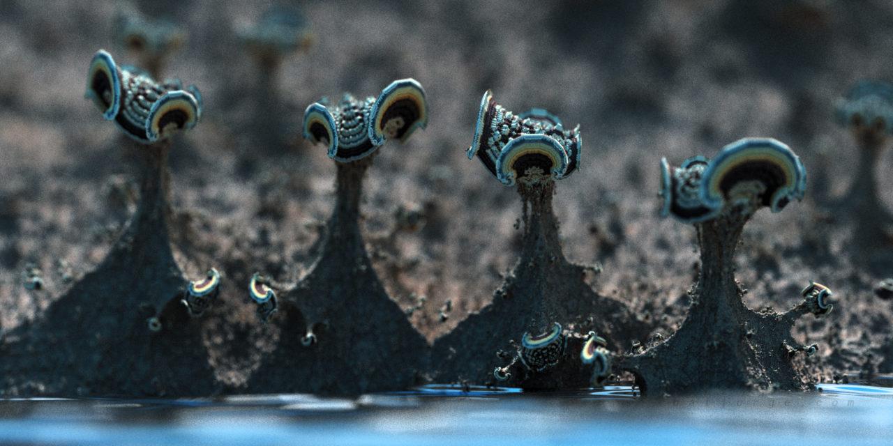 3D fractal. amazing surf formula. organic-like asurf. mushroom. mandelbulber. water